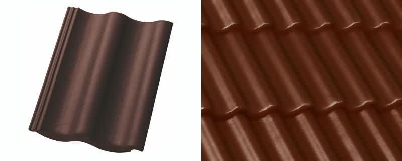 Tamsiai ruda [2]